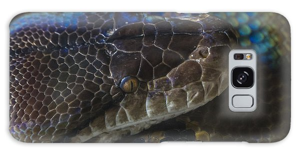Reticulated Python With Rainbow Scales Galaxy Case