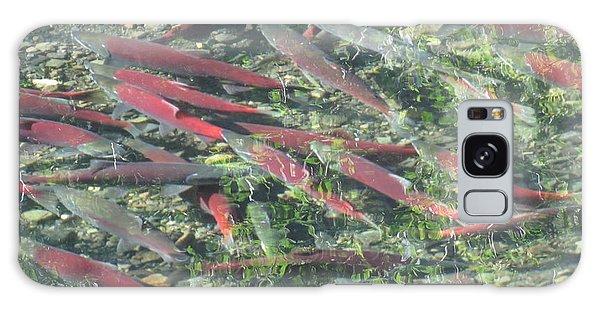 Returning Salmon Galaxy Case