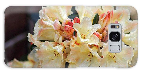 Rhododendron Nancy Evans Galaxy Case
