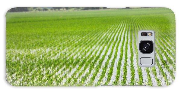 Rice Field Waxhaw Ms Galaxy Case