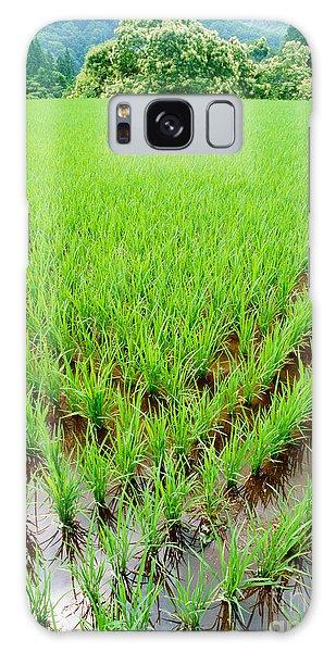 Rice Paddy Galaxy Case