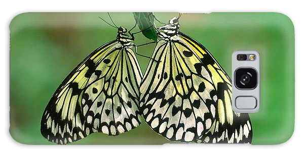 Behaviour Galaxy Case - Rice Paper Butterflies Mating by Nigel Downer