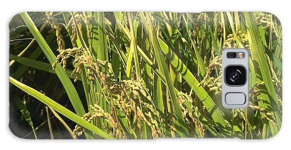 Rice Galaxy Case