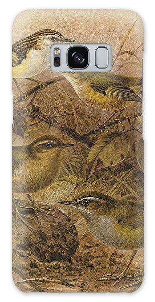 Wren Galaxy S8 Case - Rifleman Rock Wren And Bush Wren by Dreyer Wildlife Print Collections