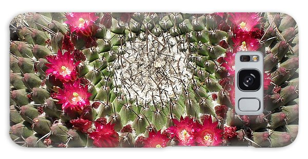 Ring Of Red Cactus Flowers Galaxy Case by Mark Barclay