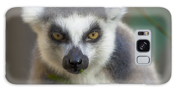 Ring Tailed Lemur Galaxy Case
