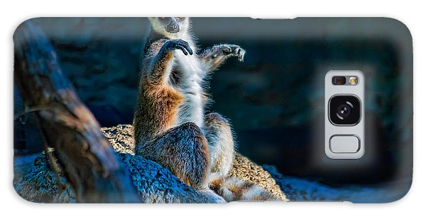 Ring-tailed Lemur Galaxy Case by Tim Stanley