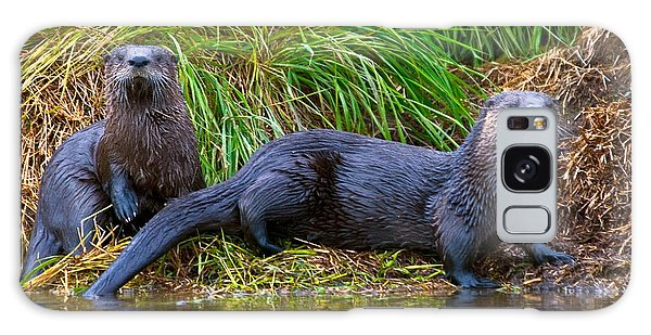 Otter Galaxy Case - River Otters by David Salter