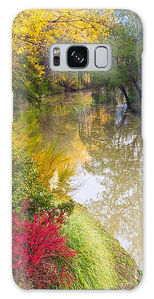 River With Autumn Colors Galaxy Case