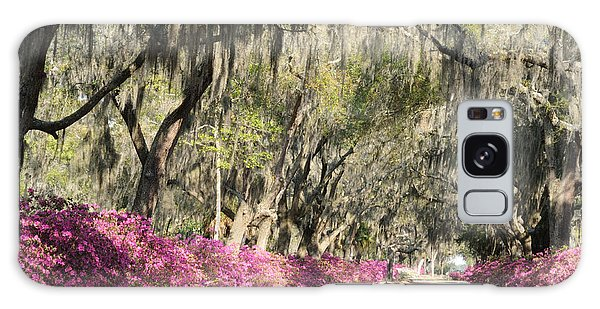 Road With Azaleas And Live Oaks Galaxy Case