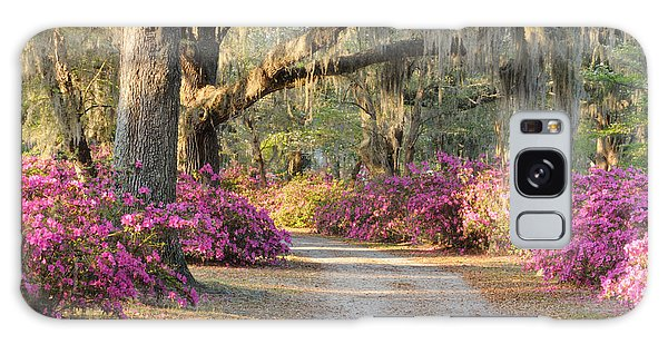 Road With Live Oaks And Azaleas Galaxy Case