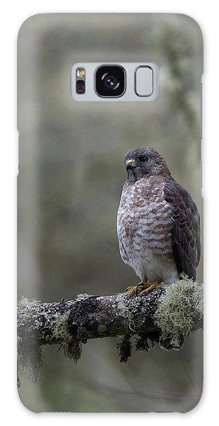 Roadside Hawk On Lichen-covered Branch 1 Galaxy Case