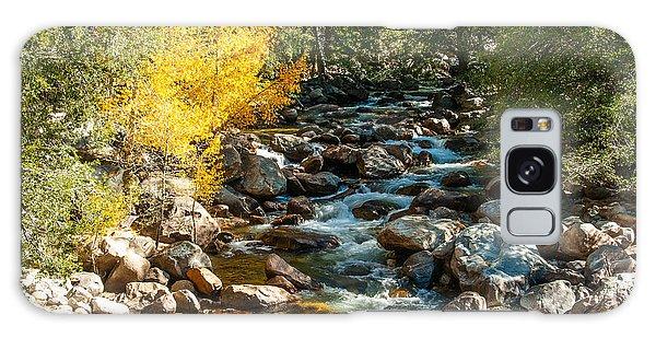 Roaring River 1-7782 Galaxy Case