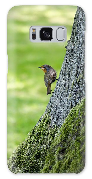Robin At Rest Galaxy Case by Spikey Mouse Photography