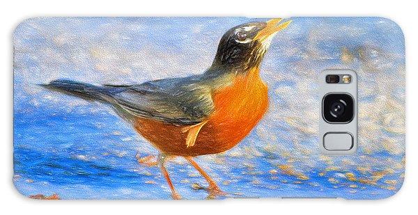 Robin In Florida Galaxy Case