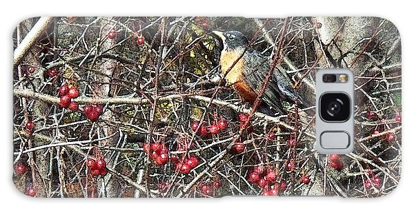 Robin In The Crab Apple Trees Galaxy Case