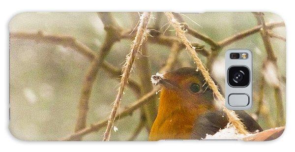 Robin In Winter Galaxy Case