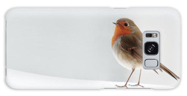 Robin Into The Snow Galaxy Case