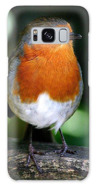 Robin Galaxy Case