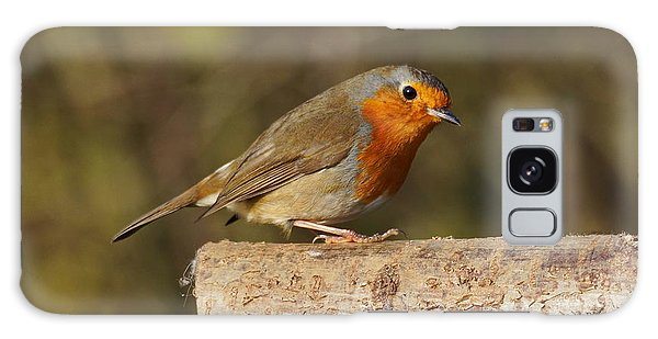 Robin On A Log Galaxy Case