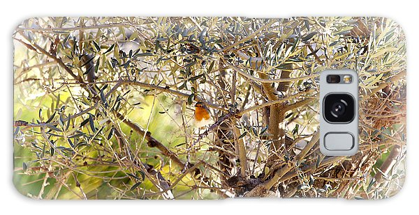 Robin Perched On Olive Tree Galaxy Case