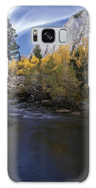 Rock Creek Canyon Gold Galaxy Case