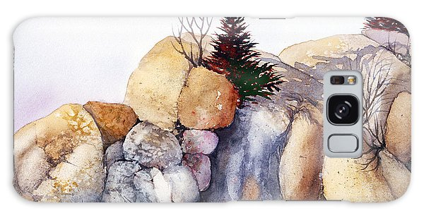 Rock Patterns Turnagain Galaxy Case by Teresa Ascone
