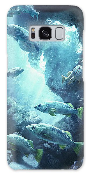 Rockfish Sanctuary Galaxy Case