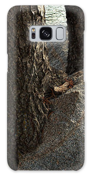 Rockin Tree Galaxy Case by Randal Bruck