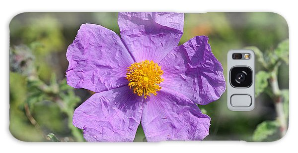 Rockrose Flower Galaxy Case by George Atsametakis