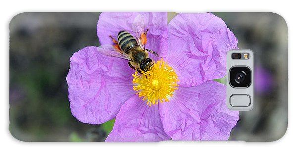 Rockrose Flower With Bee Galaxy Case by George Atsametakis