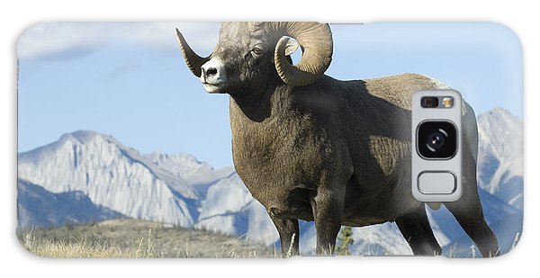 Rocky Mountain Big Horn Sheep Galaxy Case by Bob Christopher