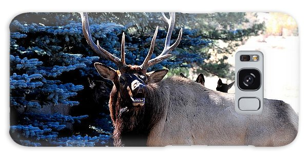 Rocky Mountain Elk - Flehmen Response Galaxy Case
