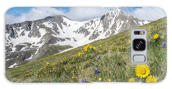 Rocky Mountain Springtime Galaxy Case