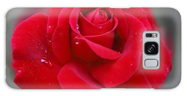 Rolands Rose Galaxy Case