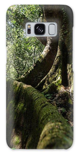 Root Galaxy Case