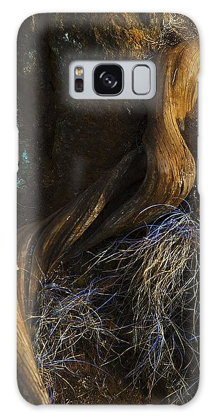 Tree Root Galaxy Case
