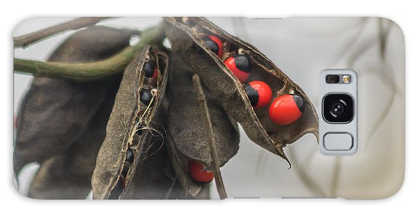 Rosary Pea Galaxy Case by Jane Luxton