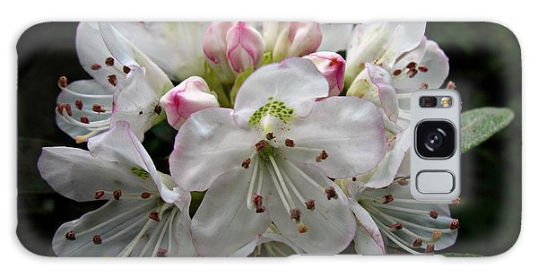 Rose Bay Rhododendron Galaxy Case