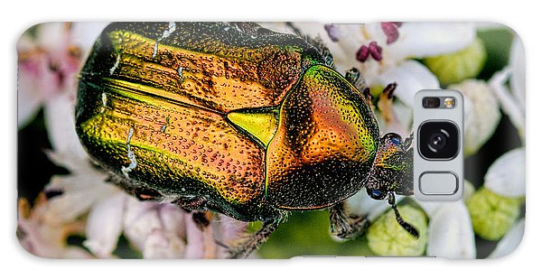 Rose Chafers Galaxy Case