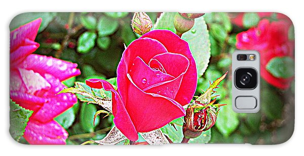 Rose Garden Centerpiece 2 Galaxy Case by Pamela Hyde Wilson