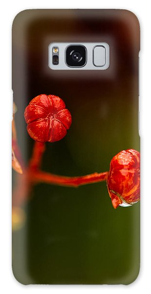 Rose Hips Galaxy Case