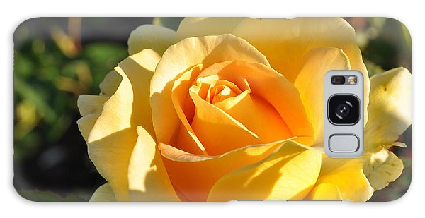 Rose - Honey Bouquet Galaxy Case by Sabine Edrissi