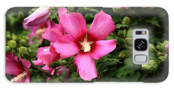 Rose Of Sharon Hibiscus 2 Galaxy Case