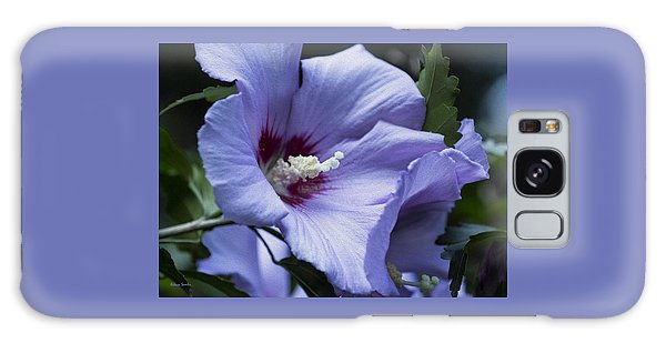 Rose Of Sharon Galaxy Case