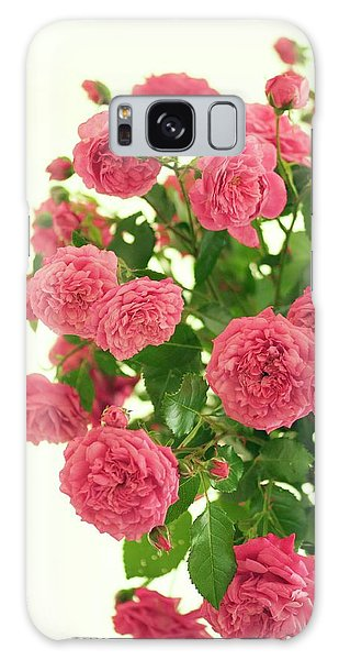 Hybrid Galaxy Case - Rose (rosa Hybrid) by Maria Mosolova