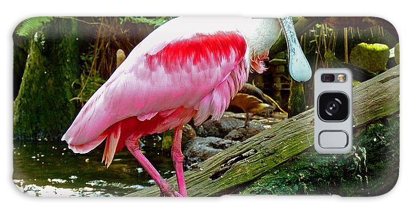 Roseate Spoonbill Sanctuary Galaxy Case by Susan Duda
