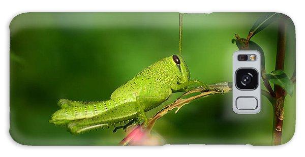 Rosemary Grasshopper - Instar Nymph Galaxy Case by Kathy Baccari