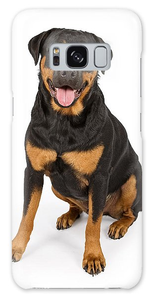 Rottweiler Dog Isolated On White Galaxy Case
