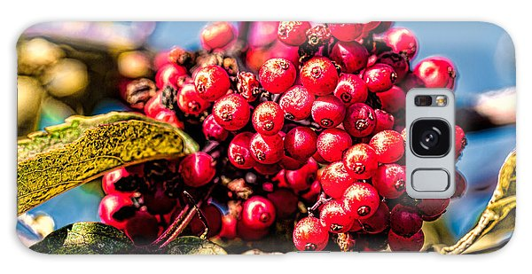 Galaxy Case featuring the photograph Rowan Berries by Leif Sohlman